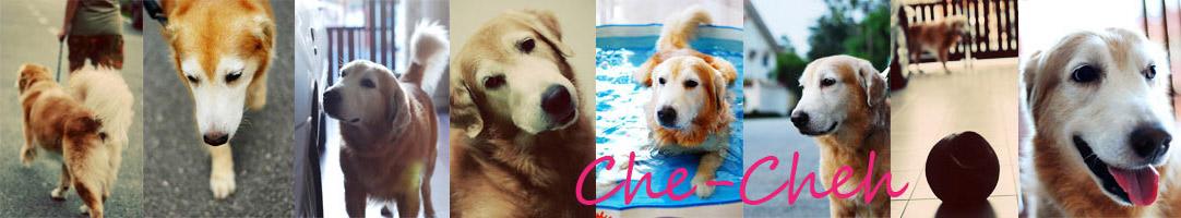 Che-Cheh