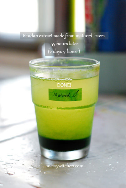Pandan Extract Made From 10 Pieces Matured Pandan Leaves