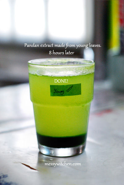 Pandan Extract Made From 10 Pieces Young Pandan Leaves