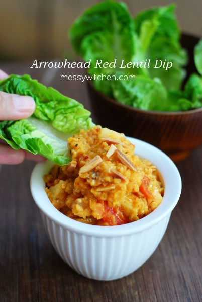 Arrowhead Red Lentil Dip