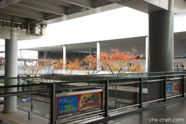 First View Of Maple Leaves Seen At Kansai Airport Station