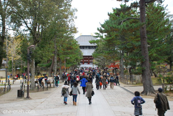 Walking Towards Todai-ji @ Nara