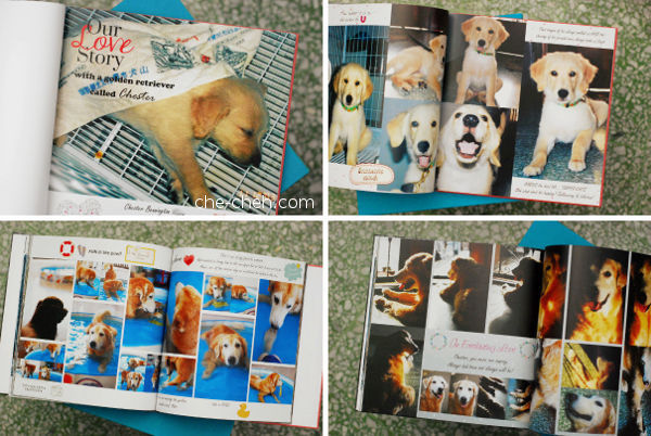 Photobook Of Chester