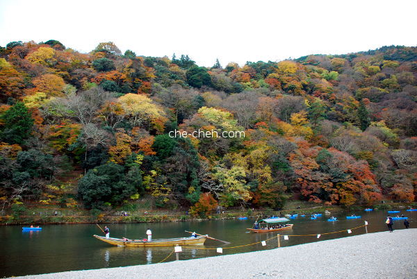 Autumn In Arashiyama & Hozu River @ Kyoto