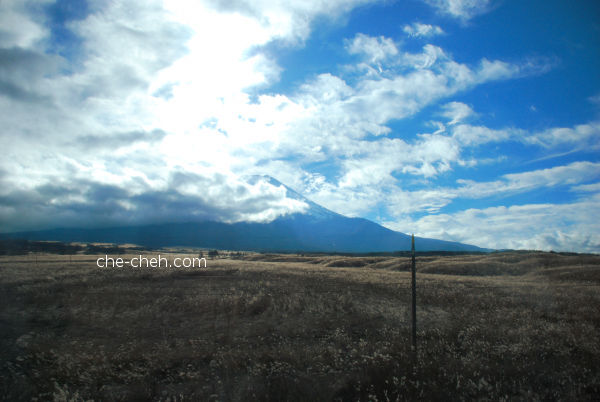 Mount Fuji And Dancing Silver Grass (Susuki ススキ) In The Foreground On The Way To Kawaguchiko At Higashi-Fuji Goko Road