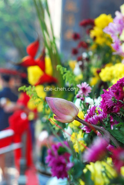 Colorful Flowers @ Kuan Yin Temple, Klang