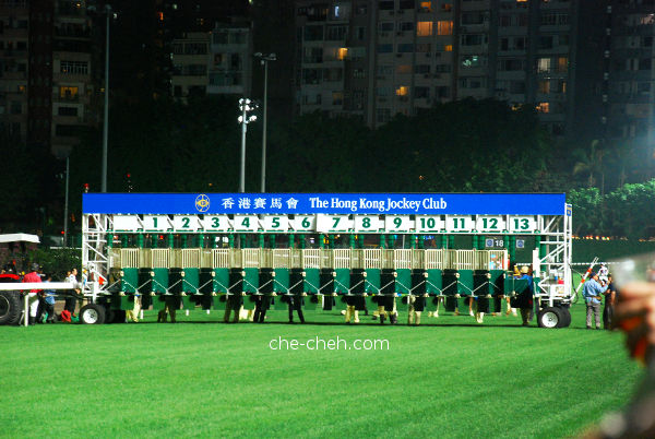 Jockeys & Horses Are Warming Up Behind The Starting Gate @ Happy Valley Racecourse, Hong Kong