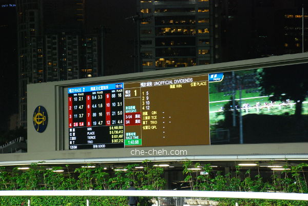 Race Winner Displayed At The Brown Area Of TV @ Happy Valley Racecourse, Hong Kong