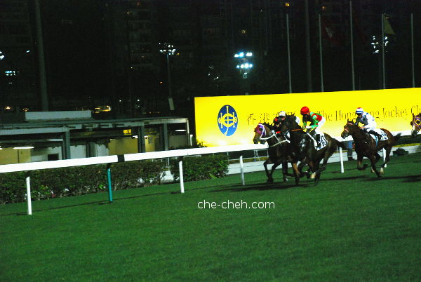 That's My No. 10 @ Happy Valley Racecourse, Hong Kong