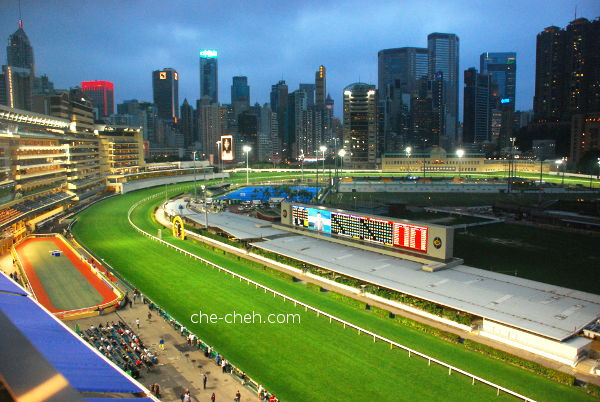 View Of The Racecourse & Parade Ring From 6th Floor @ Happy Valley Racecourse, Hong Kong